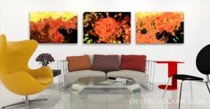 Trio of Resurrection Lilies in a Contemporary Room with Autumn Hues